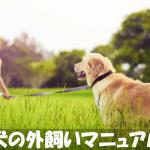 【犬の外飼い方法マニュアル】知っておくべき7つのコツ