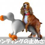 【至急】犬にマウンティングをやめさせる正しいしつけ方法