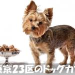 【犬がくつろげるカフェ】東京でオススメしたいお店10選