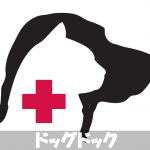 【ドッグドック】犬の健康診断の検査内容と結果からわかること