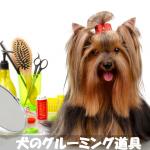 そろえておきたい犬用グルーミング道具の種類と正しい使い方