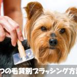 【必読】犬の抜け毛掃除が大変!4つの毛質別ブラッシング方法