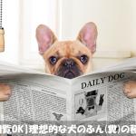犬の健康のために理想的なふん(糞)の種類を解説