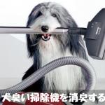 掃除機が犬臭いなら重曹を吸い取って入れておくで消臭しよう!